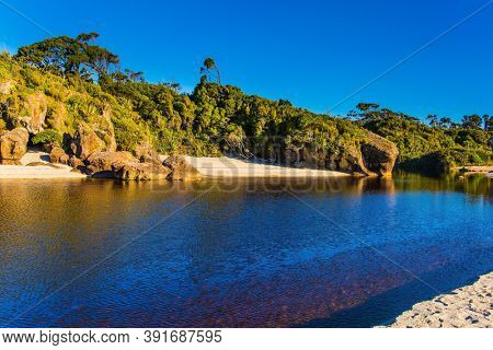 Road to Knight's Point Lookout. Pacific coast at low tide. Magic reflections of overgrown shores.  New Zealand, South Island. Sunrise. Puddles of ocean water on the shore.