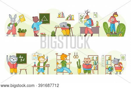 Collection Of Funny Cartoon Animals Students Or Pupils Studying. Smart Animal On Education Writing,