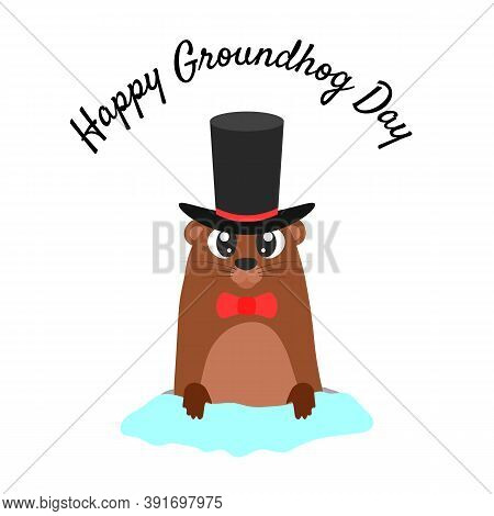 Happy Groundhog Day. Groundhog In A Hat Coming Out Of Its Burrow.