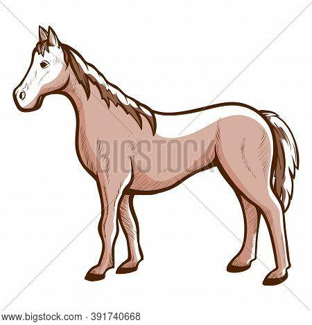 Horse Hand Drawn Icon. Racehorse, Courser Chestnut, Sorrel Or Bay Color. Domestic, Farm Animal.