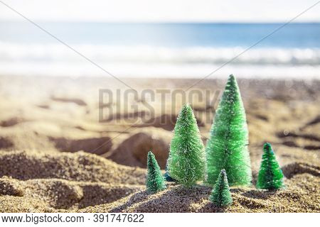 Green Toy Christmas Trees Standing On The Beach On The Sand On A Sunny Day With A Sea View. Space Fo