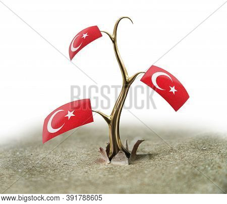 3d Illustration. 3d Sprout With Turkish Flag On White