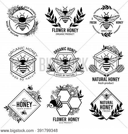 Honey Labels. Beekeeping Eco Product Badges, Apiculture Natural Organic Propolis Stickers. Flower Ne