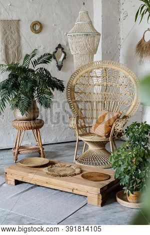 Vertical View Of Wicker Armchair, Flooring Table, Decor, Green House Plants In Cozy Living Room With