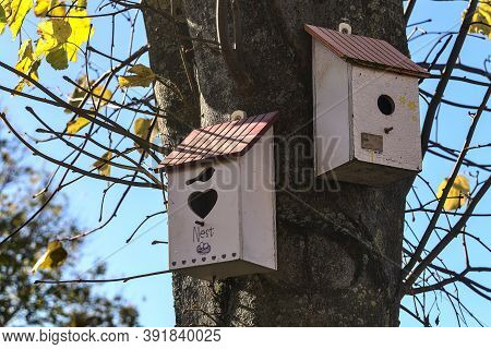 Two Beautiful Gray Old Wooden Bird Houses On Linden Tree With Yellow And Green Autumn Leaves Against