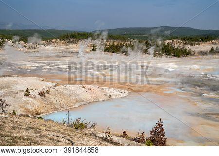 Norris Geyser Basin Area Of Yellowstone National Park, Along Porcelain Basin Trail
