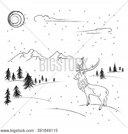 A Coal Drawing Is A Winter Forest And Deer And Mountains On A Sunny Day For Christmas Cards Design.