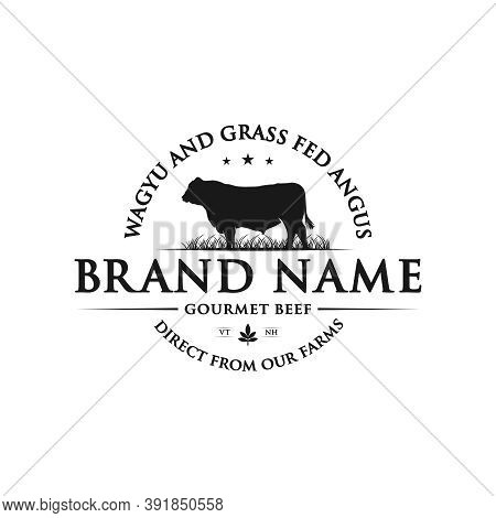 Vintage Design Of Angus Cattle Ranch Or Brand