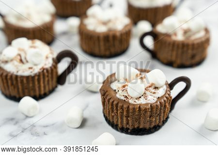Mini Chocolate Cheesecake Decorated With Whipped Cream And Marshmallow Like A Hot Cocoa Drink