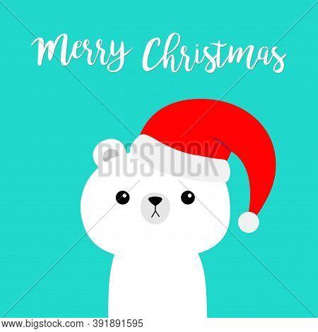 Merry Christmas. Polar White Bear In Red Santa Claus Hat. Cute Cartoon Kawaii Baby Character. Happy