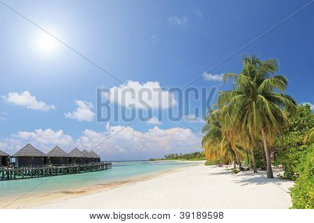 Scene of sandy beach with palm trees and villa cottages at Kuredu island, Maldives, Lhaviyani atoll