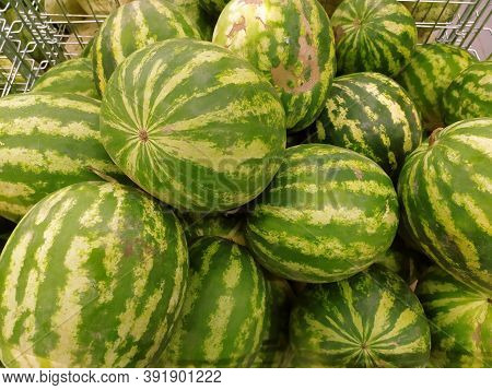 Watermelon. A Large Pile Of Green Striped Watermelons, A Market Bench For A Watermelon Merchant. Ber