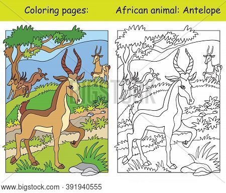 Vector Coloring Pages With Cute Antelope In African Area. Cartoon Isolated Colorful Illustration. Co