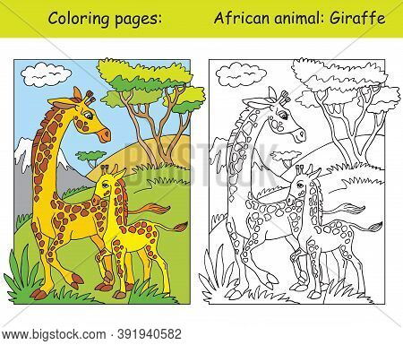 Vector Coloring Pages With Cute Giraffe Family In African Area. Cartoon Isolated Colorful Illustrati