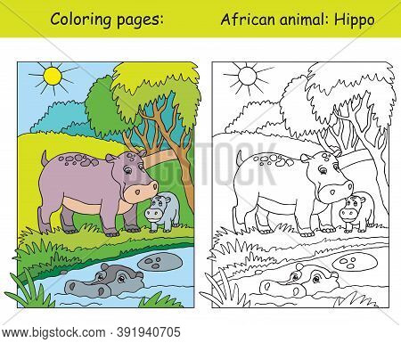 Vector Coloring Pages With Cute Hippo Family In African Area. Cartoon Isolated Colorful Illustration