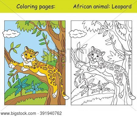 Vector Coloring Pages With Cute Leopard In African Area. Cartoon Isolated Colorful Illustration. Col