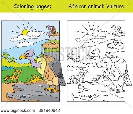 Vector Coloring Pages With Cute Vulture In African Area. Cartoon Isolated Colorful Illustration. Col