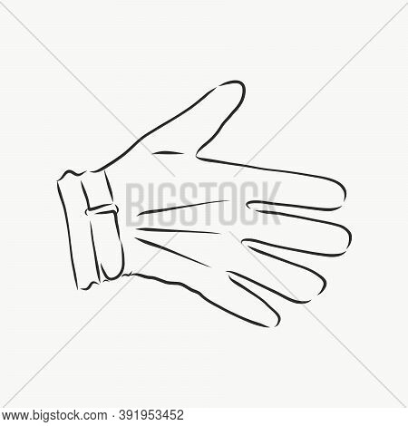 Sketch Of Winter Gloves, Vector Illustration Isoltaed On White Background, Pair Of Gloves, Gloves, V