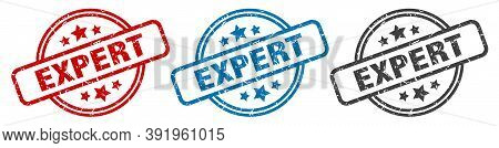 Expert Stamp. Expert Round Isolated Sign. Expert Label Set
