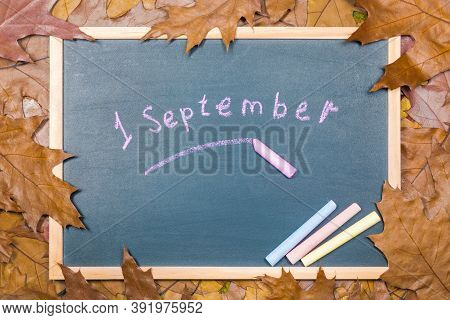 Chalkboard For Study Against The Background Of Autumn Dry Leaves. The Concept Of The Start Of The Sc