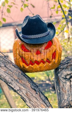 Halloween Pumpkin With Cowboy Hat And Glowing Red Eyes. A Stuffed Tree Garden. Jack-o-lantern.