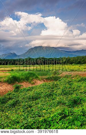 Landscape Mountain View With Blue Sky And White Cloud And Green Grass In Evening Light