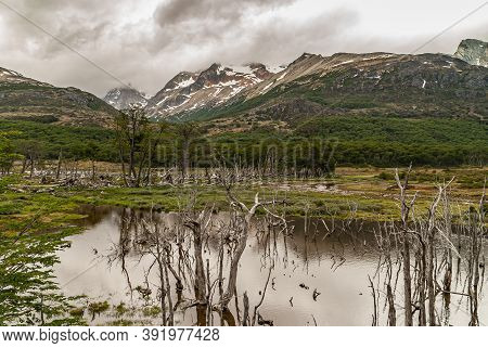 Ushuaia, Tierra Del Fuego, Argentina - December 13, 2008: Martial Mountains In Nature Reserve. Mount