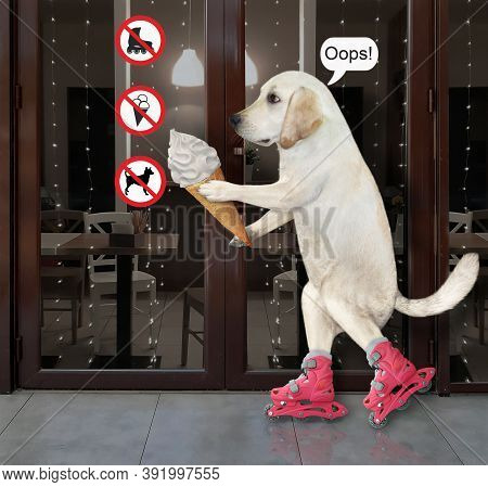 A Dog With A Cone Of Ice Cream Is Rollerblading Near The Entrance To A Restaurant With Prohibitory S
