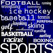 football ice hockey baseball basketball and other sport disciplines poster
