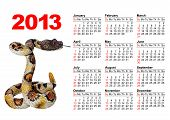 American calendar for 2013 with image a snake poster