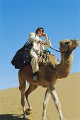 Man outdoors in the desert using a cellular phone on a camel poster