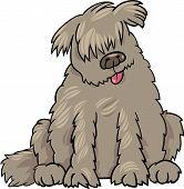Cartoon Illustration of Funny Purebred Newfoundland Dog or Labrador Doodle or Briard poster