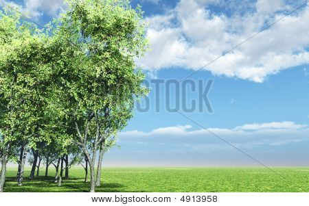 Beautiful Landscape With Trees