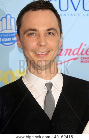 LOS ANGELES - AUG 11:  Jim Parsons in the 2013 Teen Choice Awards Press Room at the Gibson Ampitheater Universal on August 11, 2013 in Los Angeles, CA