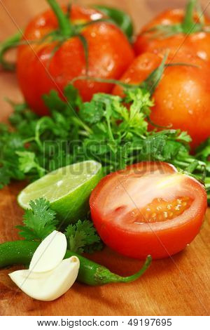 Picante Salsa Ingredients of Avocado, Cilantro, Tomatoes and Peppers