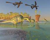 A family of Olorotitan dinosaurs eat duckweed in a large swamp as two Archaeopteryx birds fly over. poster