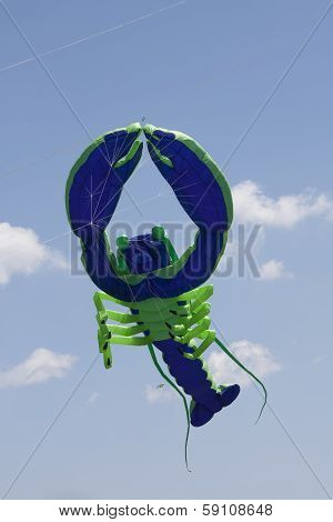 Blue And Green Lobster Kite Flys High