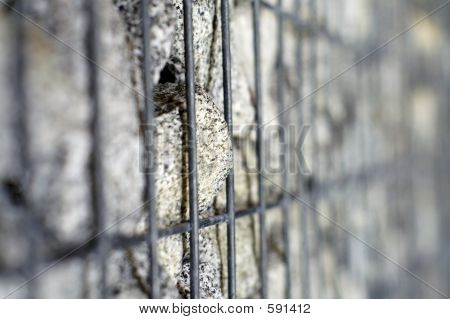 Imprisoned Rock