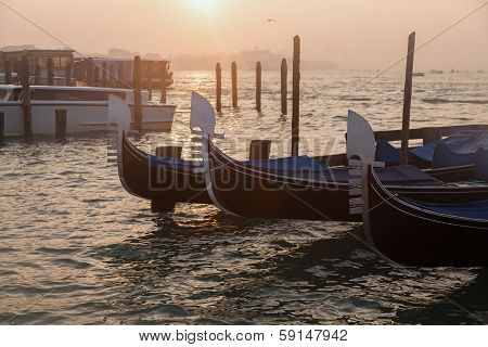 Venetian gondolas at sunrise in venice Italy