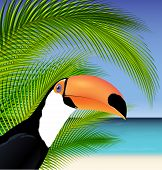 Vector Exotic trip card with palm tree and Toucan poster
