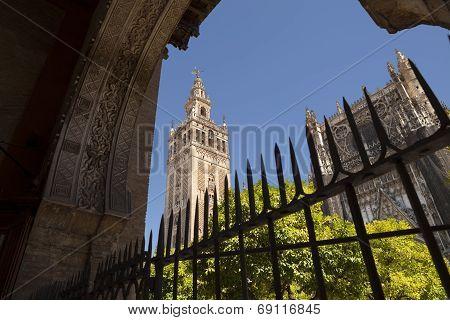 La Giralda Tower In Seville