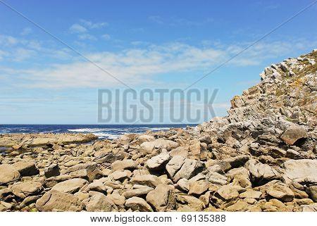 stone coast on Cies Islands (illas cies) - Galicia National Park in Atlantic Ocean Spain poster
