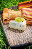 Blue cheese with grapes and baguette on wooden tray outdoors poster