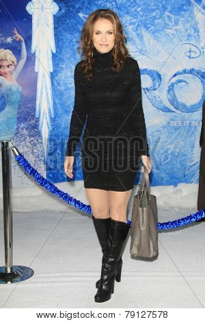 LOS ANGELES - NOV 19: Amy Brenneman at the premiere of Walt Disney Animation Studios' 'Frozen' at the El Capitan Theater on November 19, 2013 in Los Angeles, CA