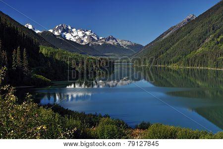 Beautiful green foliage by a mountain lake