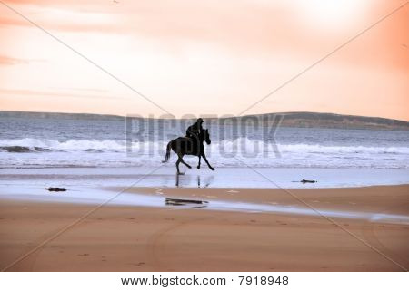 silhouette of a horse and rider galloping on ballybunion beach at sunset in kerry ireland poster