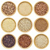 gluten free grains  - buckwheat, amaranth, brown rice, millet, sorghum, teff, black, red and white quinoa - isolated wooden bowls poster