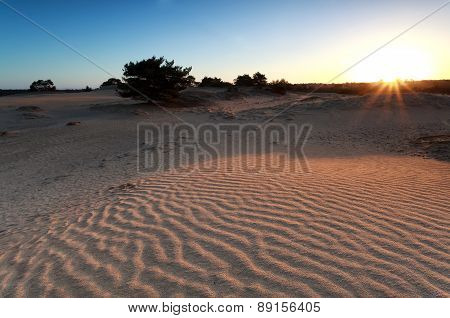 Sunrise Over Sand Dune