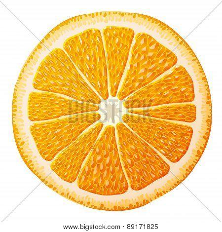 Orange Slice Close Up