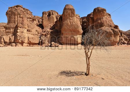 Solomons Pillars Timna park Israel. The pillars were formed over 500 million years ago by rain penetrated into fissures in the sandstone poster